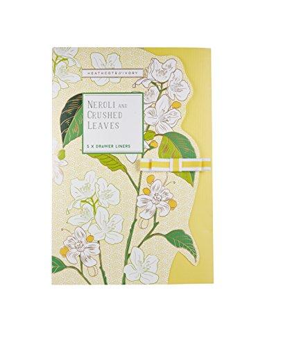 Heathcote & Ivory Neroli und Limette Blätter Parfümierte Schubladeneinlagen, 0,5x 19,5x...